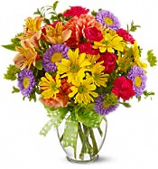 CLICK HERE to shop everyday flowers!