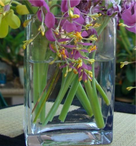 Simply Elegant Weddings Vases Long Rectangle Vases